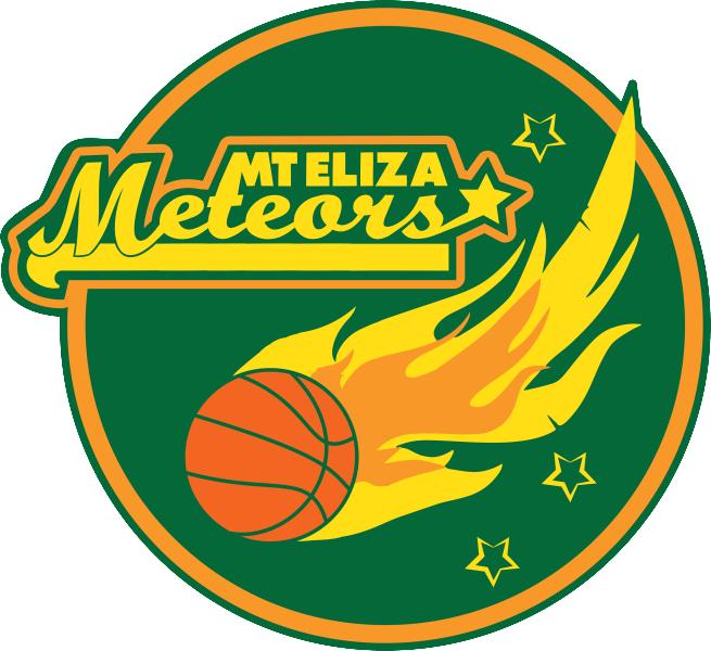 MtElizaMeteorsLOGO