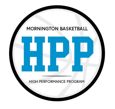 High-Performance-Mock-Up -Blue